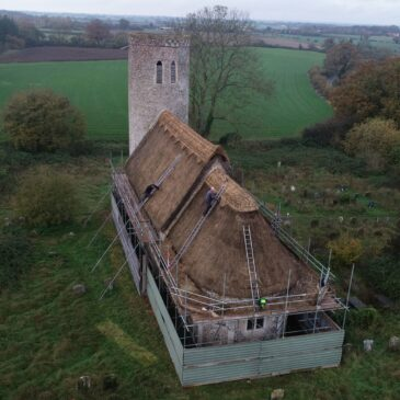 Thatchers use Norfolk sedge for roof repairs
